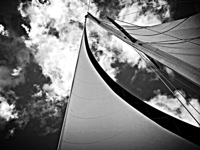 Sailing Black And White Relaxing Enjoying The View