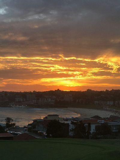 Sydney Sunset Northbondi