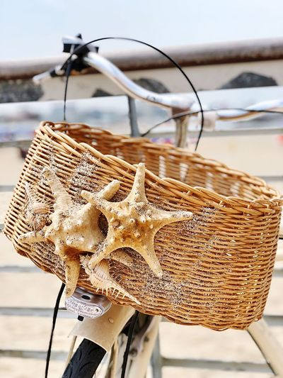 Close-up of bicycle in basket on beach