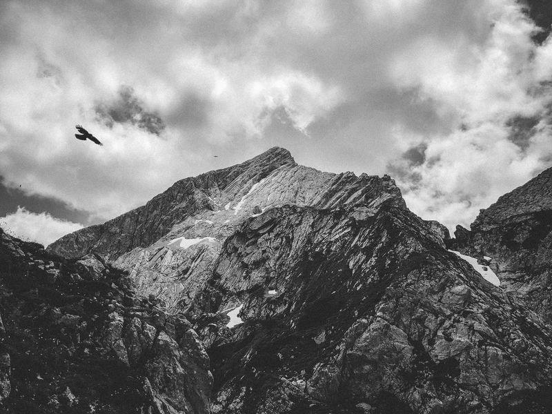 Alpspitze Blackandwhite Wettersteingebirge Alpspitze Garmisch-partenkirchen Bavaria Sky Low Angle View Flying Nature Animal Themes Animal Beauty In Nature