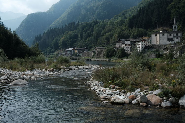 Scenic view of river amidst trees and buildings