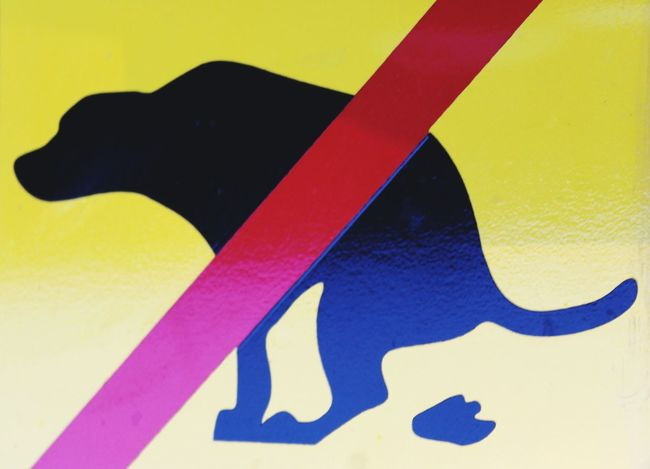 No dog Toilette! Yellow Multi Colored Dog No Dog's Excrements No Dog's Dirt Sign Forbidden Interdiction prohibition