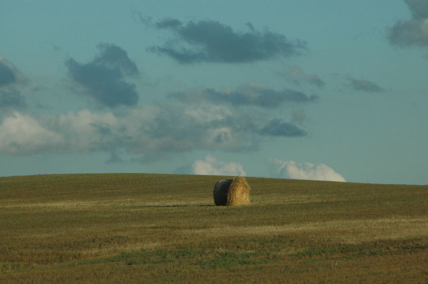 ©Amy Boyle Photography Agriculture Bale  Beauty In Nature Cloud Cloud - Sky Cloudy Day Field Grass Grassy Horizon Over Land Idyllic Landscape Nature No People Non-urban Scene Outdoors Remote Rural Scene Scenics Sky South Dakota South Dakota Badlands Tranquil Scene Tranquility