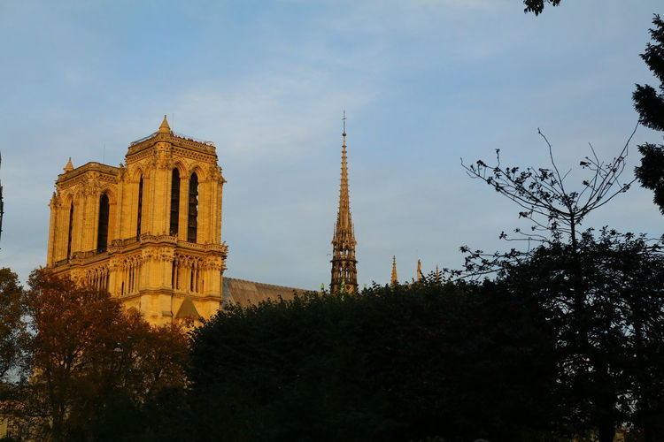 Notre Dame De Paris Architecture Bell Tower Building Exterior Built Structure Day Low Angle View Nature No People Outdoors Place Of Worship Religion Sky Spirituality Tower Travel Destinations Tree