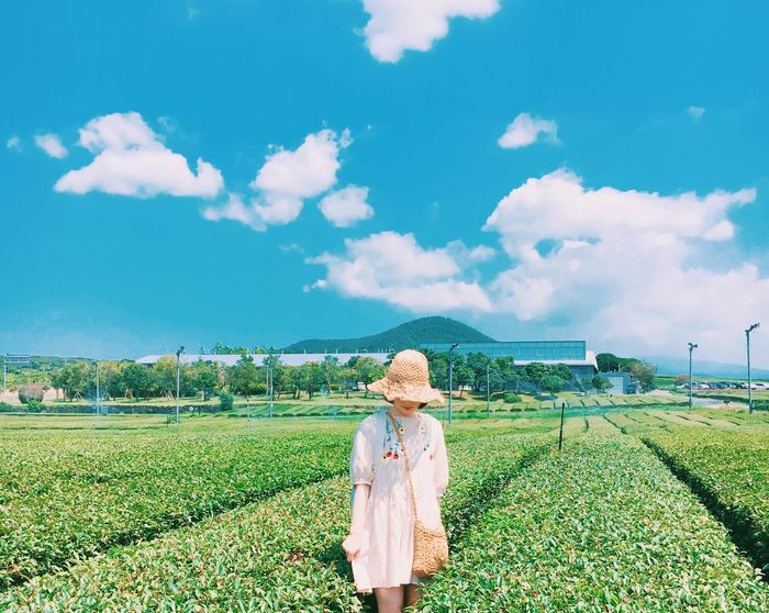Young Adult Cloud - Sky Green Tea Farm