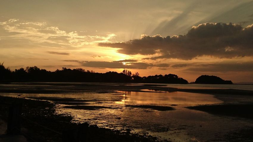 Shadows & Lights Thailand The Night Is Coming. Beauty In Nature Cloud - Sky Low Tide Nature No People Outdoors Reflection Scenics Silhouette Sky Sunbeams Sunset Tranquil Scene Tranquility Tree Water Lost In The Landscape An Eye For Travel
