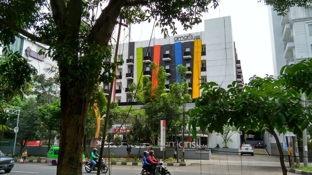 Tree Growth Built Structure Architecture Green Color Building Exterior Modern Hotels And Resorts Tree Branches Amenity Bogor, Indonesia