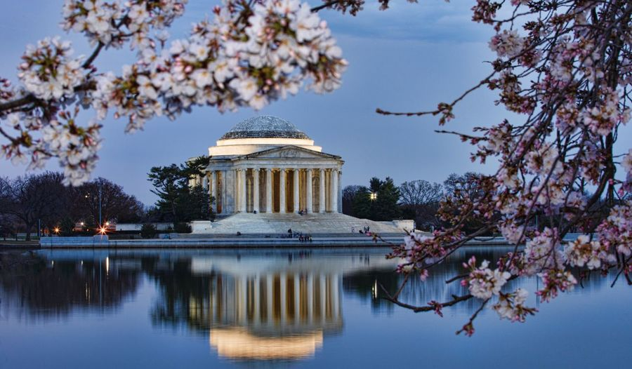Jefferson Memorial Tree Reflection Sky Dome Architecture Water Travel Destinations Outdoors Built Structure Building Exterior Cherry Blossoms Architecture Reflection Washington, D. C. Waterfront Nature City No People Landscape Rickeherbertphotography Fotografia Arquitectura The Architect - 2017 EyeEm Awards Been There.