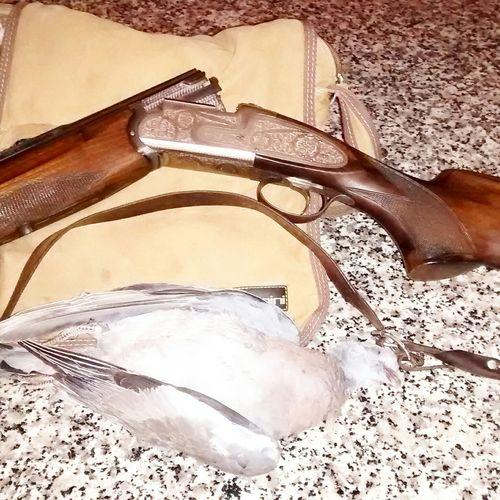 Un dia de caza Tomas Mantecas