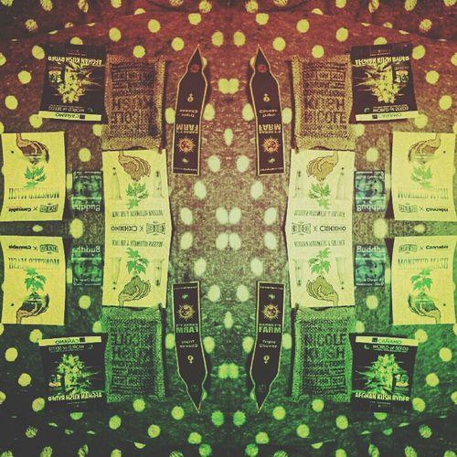 Weed Weed Life WeedPorn Weeds Marijuana Marijuana - Herbal Cannabis Marijuana 💚 Marijuana Seed Marryjane MarryJane! Canabis Canabisculture Canabis 💘 Seed Seeds Kush Kush Time Budahsmoker Budah Afgan Afganistan Cheese