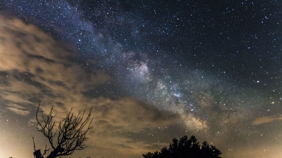 Astronomy Beauty In Nature Constellation Dark Galaxy Growth Idyllic Infinity Low Angle View Majestic Milky Way Nature Night No People Outdoors Scenics Sky Space Space Exploration Star Star - Space Star Field Tranquil Scene Tranquility Tree