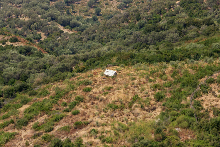 Abandoned Places House On The Hill Abandoned Buildings Day High Angle View House Nature No People Outdoors Scenics Tree