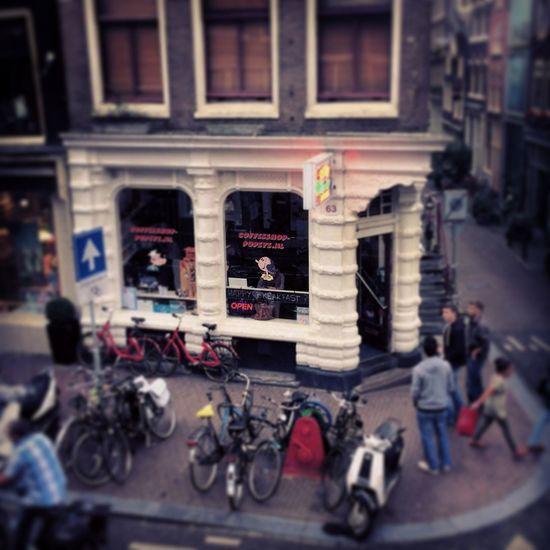 PopeyeCoffeeShop 420 VanillaKush Amsterdam