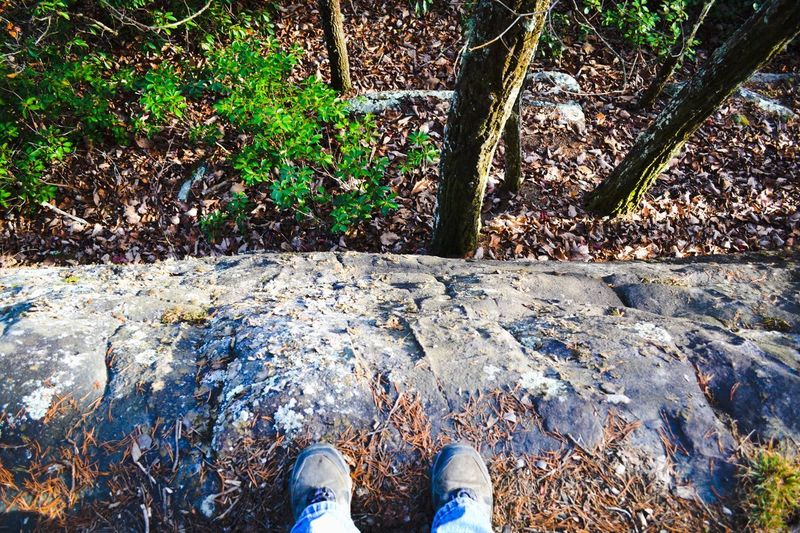 On a wall. Fiery Gizzard Trail Hiking Personal Perspective Real People Human Body Part One Person Standing Shoe Nature High Angle View Human Foot