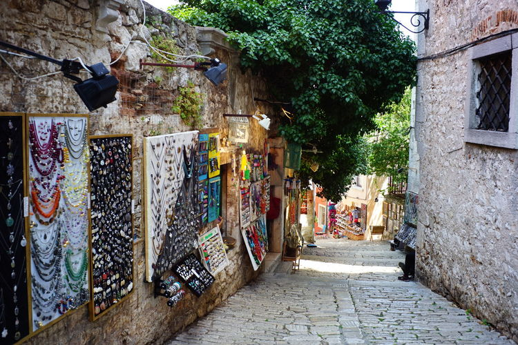 Shopping street in Europe Architecture Built Structure Building Exterior The Way Forward Tree Direction Plant Building Day Wall - Building Feature Footpath Nature No People Street City Outdoors Narrow Wall Alley Paving Stone Stone Wall Europe Shopping Street Pathways