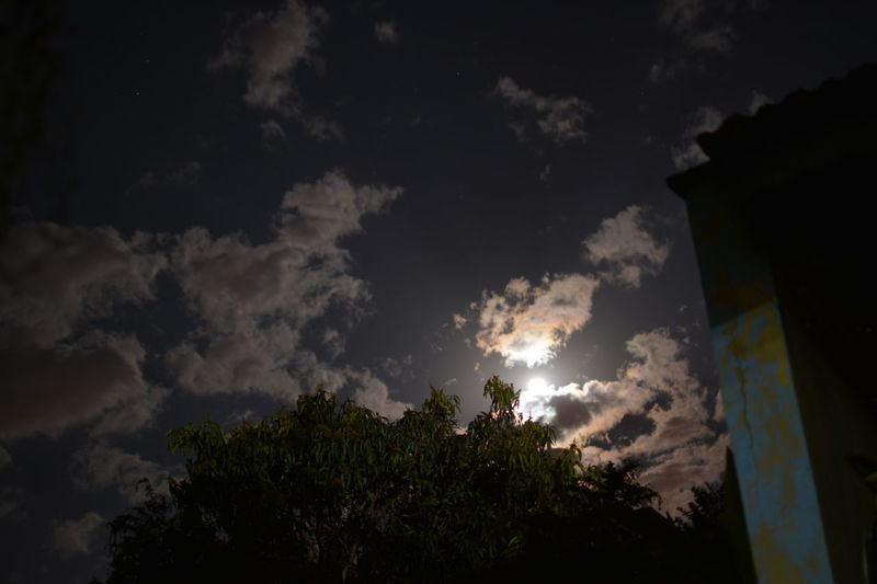 Hidden Moon Stars And Clouds Trees At Night Geography In The Clouds Moon Moon And Clouds Moon At Night