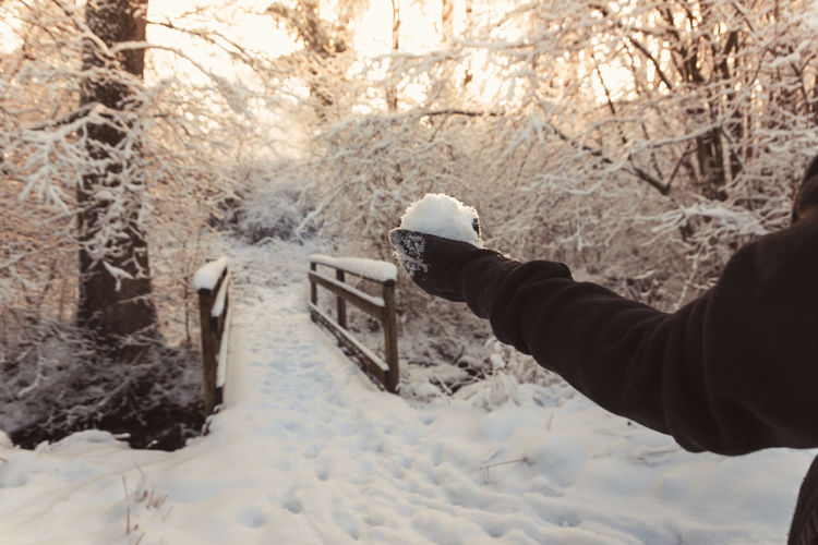 Person hand holding snow covered land