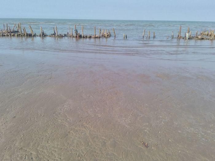 Landscape Outdoors Sky Sand Sea Beach