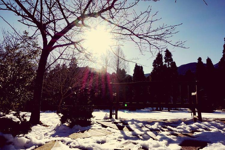 Taking Photos Relaxing Enjoying Life Hello World Japan Art Hanging Out Beautiful Day Beautiful Peace And Quiet