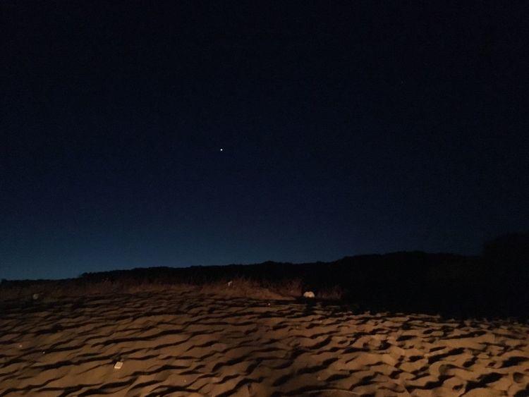 Stella polare Starry Night Polar Star Stars Star Stella Polaris Stella Sand Desert Sand Dune Nature Night Clear Sky Moon Sky Arid Climate Tranquil Scene Outdoors Beauty In Nature Landscape Scenics No People Mammal Astronomy