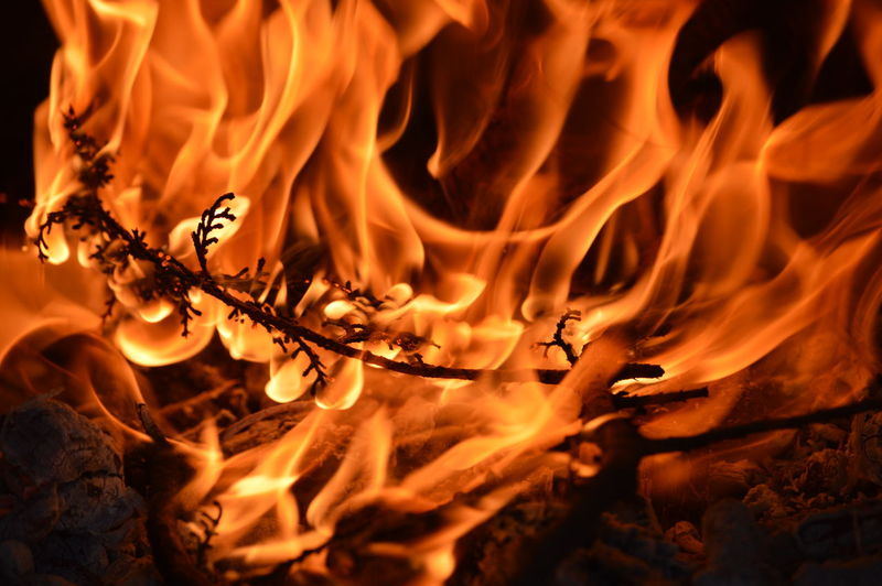 Twig burning in bonfire at night