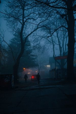 Dark VSCO Vscofilm Trees Mood Berlin Love Berlin Photography Winter Misty Foggy Outdoors Illuminated Winter One Person Nature Architecture City Road Shades Of Winter