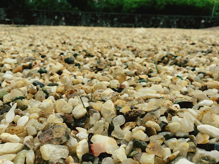 Stones On Field In Garden