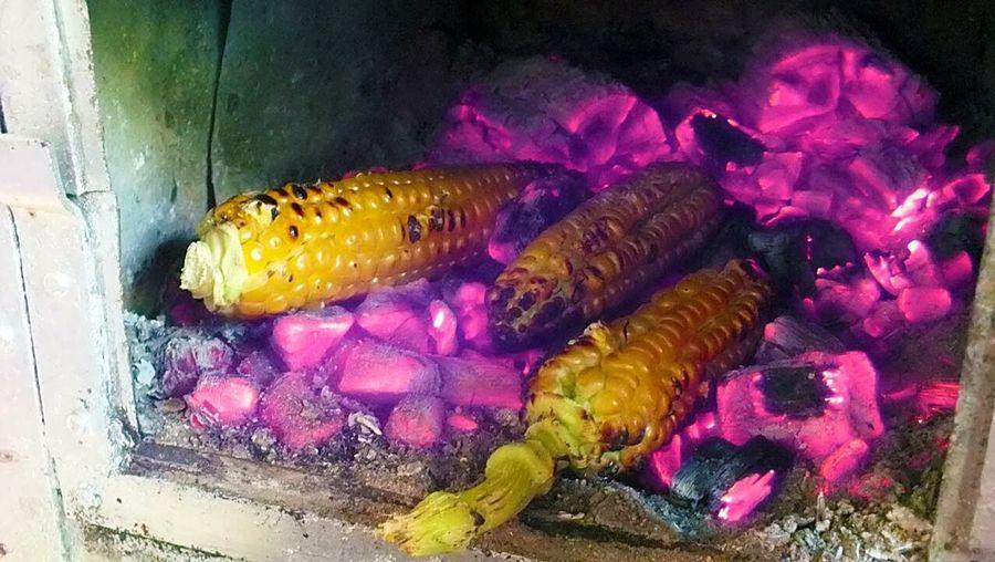 Corn Mısır Közde Mısır
