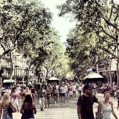 Ramblas Barcelona Summer Bcn spain love me boqueria rambla holidays la barcellona mercat barca catalunya instapic street shopping las like food people art vacation instasummer trees instagram instalove españa colors