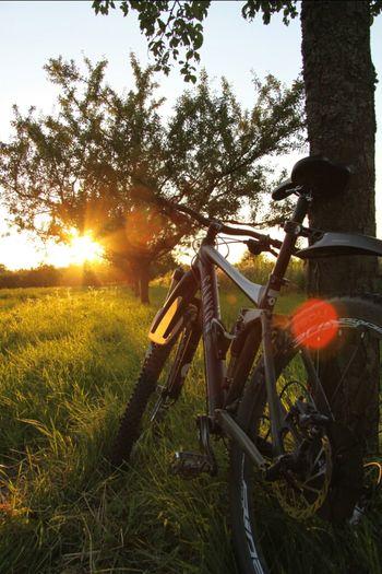 Sunset Enjoying Nature My Other Hobby