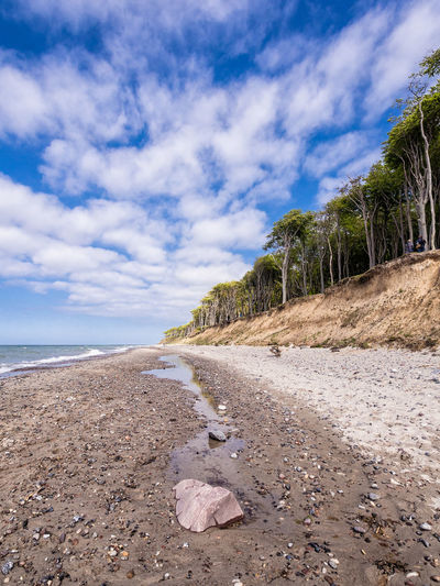 Coastal forest in Nienhagen, Germany. Baltic Sea Beach Beauty In Nature Coast Day Forest Gespensterwald Horizon Over Water Landscape Nature Nienhagen Germany No People Outdoors Scenics Sea Shore Sky Tourism Tranquil Scene Tranquility Travel Tree Vacation Water