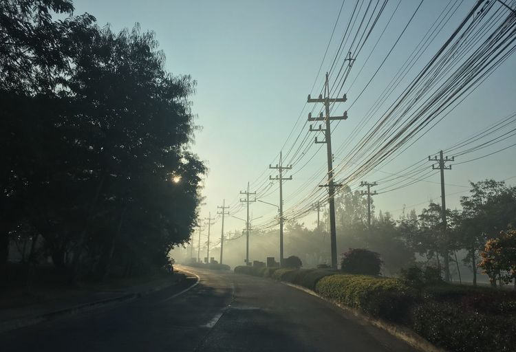 Cable Electricity  Tree Plant Electricity Pylon Power Line  Sky Transportation Road The Way Forward Mode Of Transportation No People Street