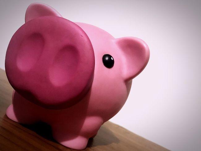Puerco Pig Pink Color Piggy Bank Alcancia