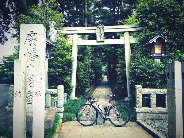 廣幡八幡宮 柏 増尾 ロードバイク DeRosa シャマルミレ Enjoying Life 近所 千葉県