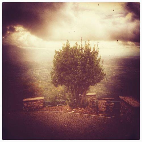 ....quasi un lampo, e dietro di te....la luce Snapseed IPhoneography EyeEm Nature Lover