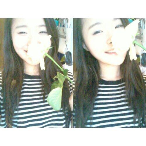 Hi Korean Asian  Rosé selfiestripes