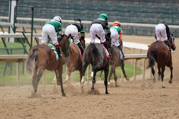 Rear view of jockeys during race