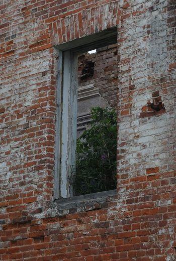 Window Architecture Close-up Built Structure Building Exterior Textured  Closed Door