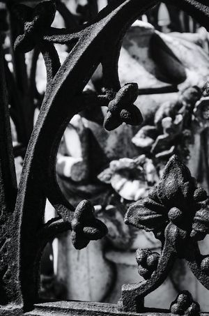 Iron Fence Cemetery Photography Nikon D5100  Black & White Outdoors Metal Things High Contrast Peaceful No People Wrought Iron Fencing