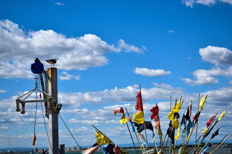 Close-up of flags by pole against sky
