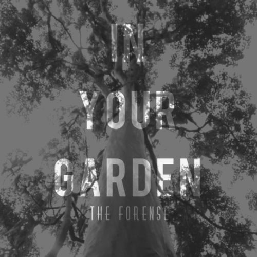 My first album IN YOUR GARDEN, with the collaboration of Luis Garcias, Viic Grant, deluxes tracks will be released, I'll post videos with the songs then @viic_vi @luizfxavier @gmlarissa @fr4ncina17 @the_florence_fans @new_florencenoow Inyourgarden Paradise 1-Tears Of Gold 2-Hobby whore 3-A young jazz singer 4-In your Garden 5-Doll lips 6-Amid the seagulls 7-Lack To You 8-Freedom 9-His other lovers 10-A rose again 11-Reborn 12-Lost in Storm