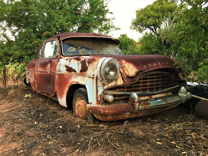 Abandoned Bad Condition Car Countryside Damaged EyeEm EyeEm Best Shots Eyem Farm Ford Ford Zephyr Hello World Land Vehicle Mode Of Transport No People Obsolete Old Car Old-fashioned Orchard Outdoors Retired Rural Scene Rusty Transportation Tree Traveling Home For The Holidays