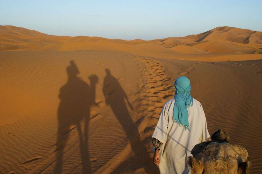 Camel trip into the Sahara desert in Merzouga, Morocco. Desert Morocco MoroccoTrip Sahara Desert Arid Climate Camel Camel Riding Camel Trip Climate Desert Land Landscape Leisure Activity Lifestyles Merzouga Outdoors Sahara Sand Sand Dune Scenics - Nature