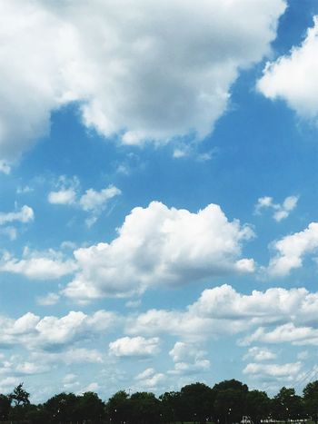 Cloud - Sky Sky Nature Beauty In Nature Day Outdoors No People Low Angle View Tranquility Backgrounds Scenics