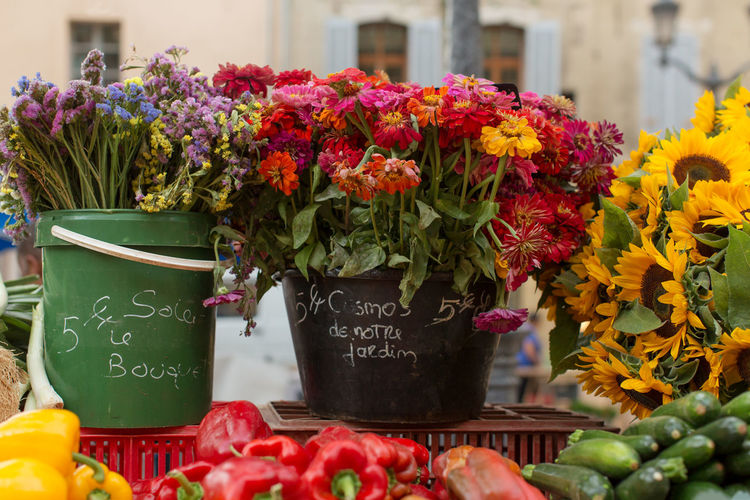 Flowers and vegetables market at Place Richelme, Aix-en-Provence Arrangement Beauty In Nature Bouquet Bunch Of Flowers Close-up Communication Flower Focus On Foreground For Sale Fragility Freshness Green Color Growth Market Number Petal Plant Price Tag Retail  Text Tulip Vegetables Western Script