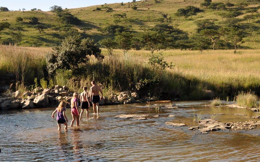 People on riverbank against trees