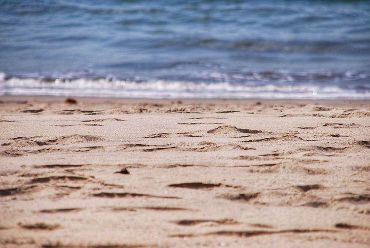Beach Beach Sea
