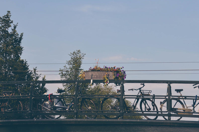 Amsterdam Netherlands Bicycle Clear Sky Day Dutch Holland No People Outdoors Railing Sky Tree