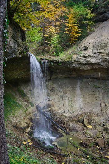 Autumn Creek Allgäu Water Motion Nature Plant No People Flowing Water Waterfall Outdoors Spraying Power In Nature Falling Water Long Exposure Splashing Flowing Tree Beauty In Nature