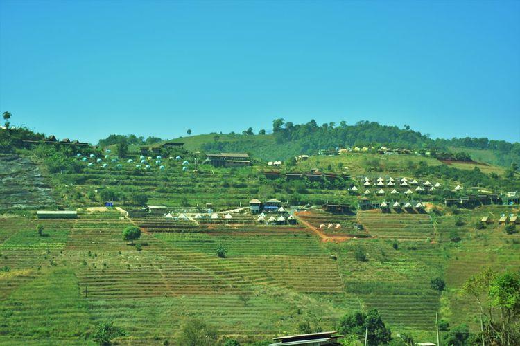 Nature Rural